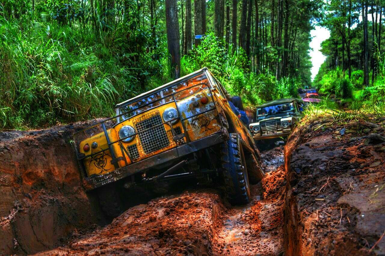 Berpetualang Off-road dan Menjadi Wali Pohon di Hutan Sukawana