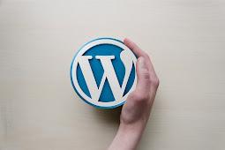 Perbedaan Wordpress org dan com