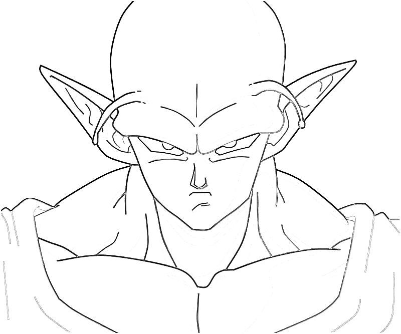 displaying 20 gallery images for piccolo drawing