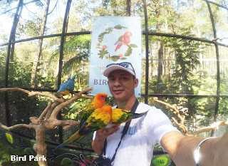 Interaksi dengan burung di bird park TWGC