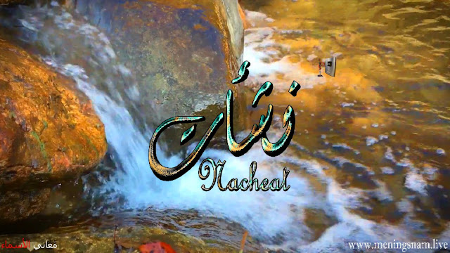 معنى اسم نشأت وصفات حامل هذا الاسم Nashat