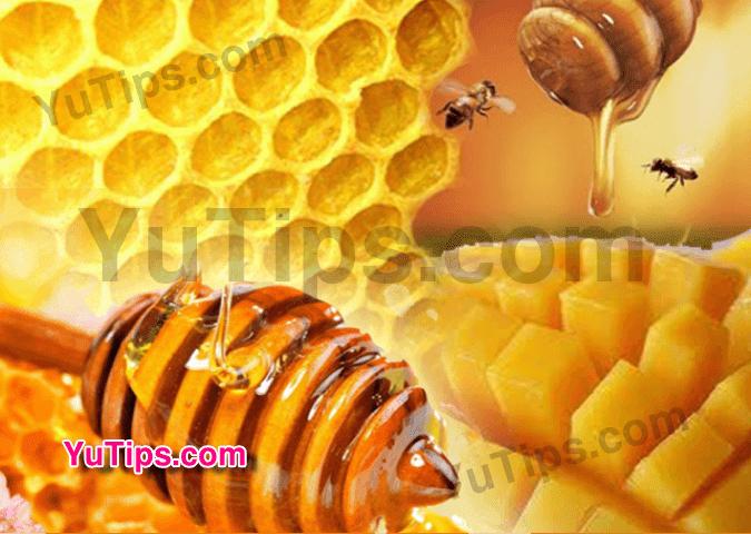 hilangkan jerawat tanpa bekas dengan madu