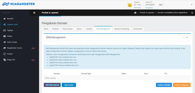 Setting pengaturan dns record Niagahoster untuk custom domain blogspot