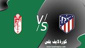 مشاهدة مباراة غرناطة واتلتيكو مدريد اليوم بث مباشر 13-02-2021 الدوري الاسباني