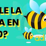 🏅 Adfly: Como ganar dinero con Adfly 2021 [La forma más facil] ✔