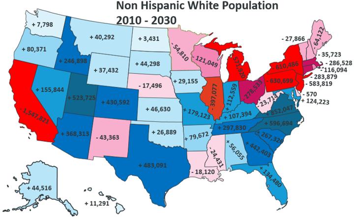 White Non-Hispanic population in America (2010 - 2030)