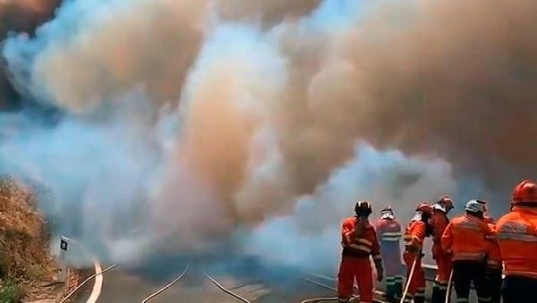 Seis mil hectáreas calcinadas y ocho mil evacuados, incendio Gran Canaria