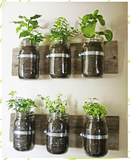 15 ไอเดียปลูกพืชใช้พื้นที่น้อย ใช้ขวดแก้่วและที่รัดสำหรับแขวน