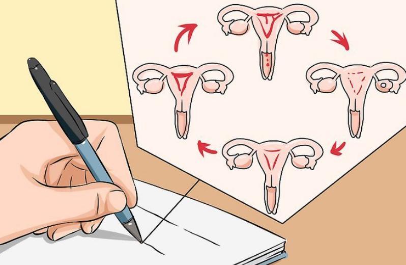 Stage 2 Cervical Cancer Life Expectancy