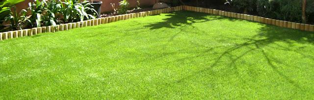 Consejos para el cuidado de tu jardín