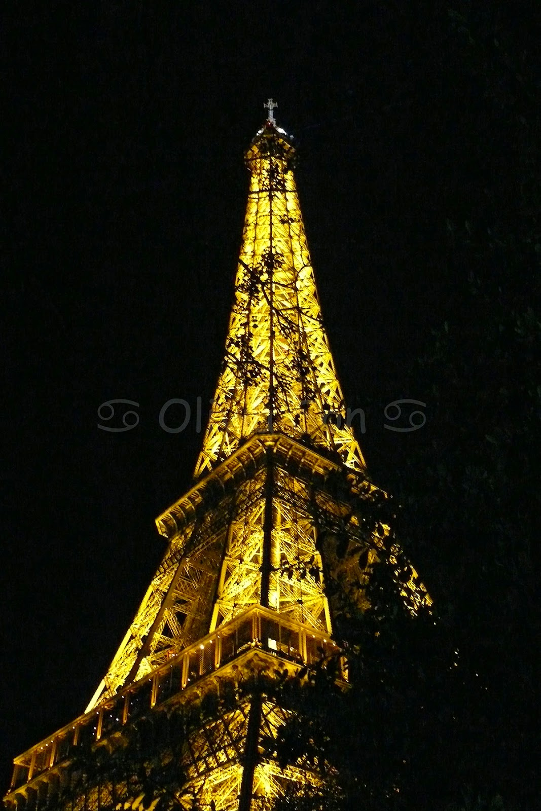 tour eiffel paris by night