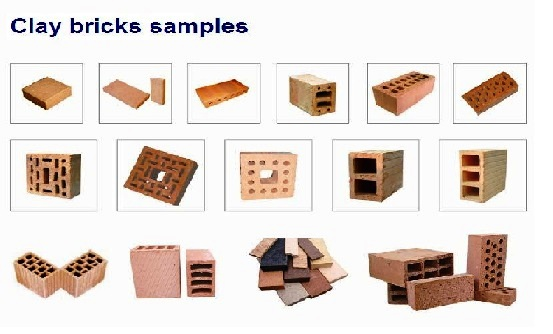 Brick making machine: Auto Bricks Sample
