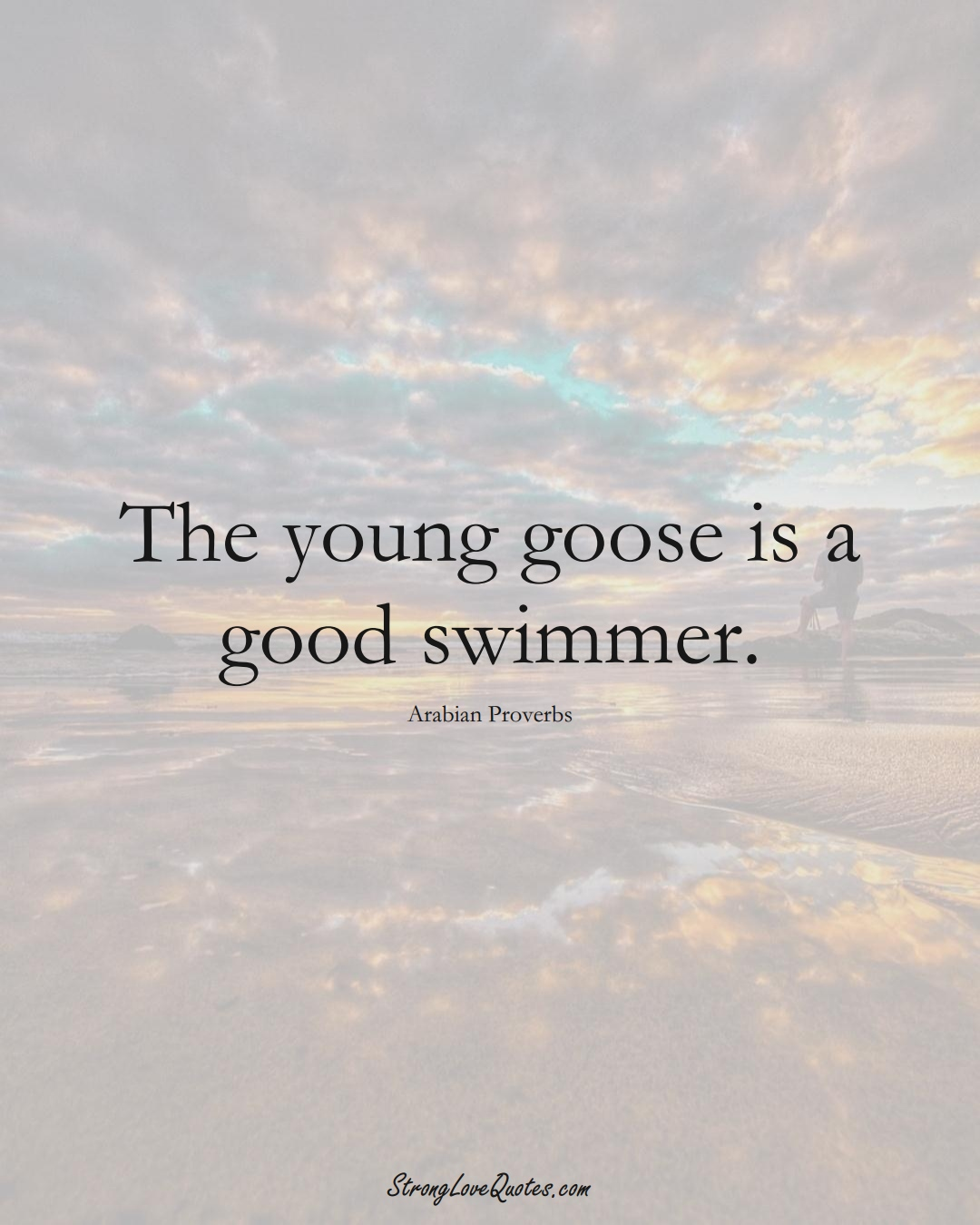 The young goose is a good swimmer. (Arabian Sayings);  #aVarietyofCulturesSayings