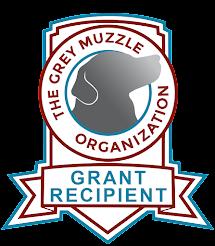 2021 Grey Muzzle Grant