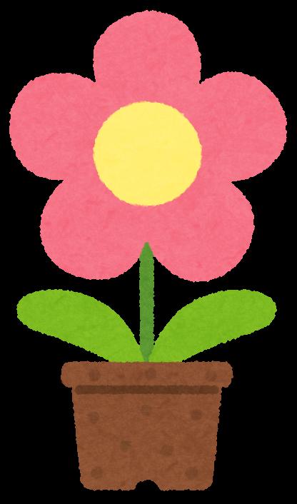 いろいろな鉢植の花のイラスト かわいいフリー素材集 いらすとや
