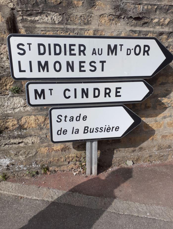 saint-didier au mont d'or et limonest lyon