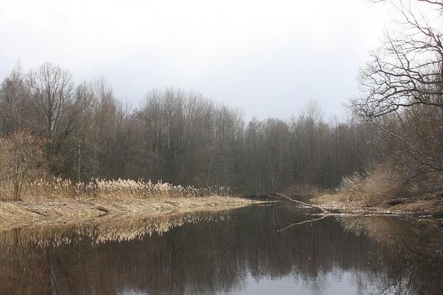 национальный парк Соомаа, сплав на байдарках, Soomaa national park