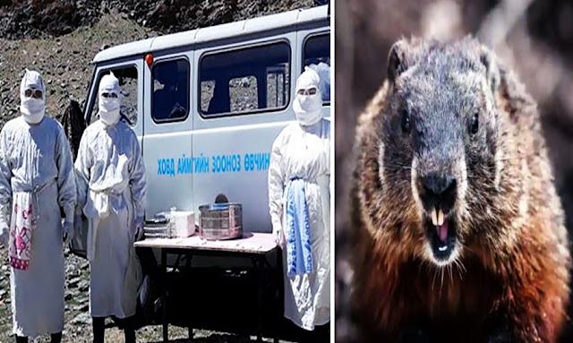 Bubonic Plague in China