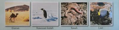 pelbagai organisma yang tinggal di habitat berbeza