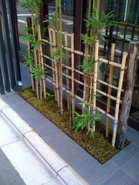 20 Wonderful Bamboo Tree Decoration Ideas Dwell Of Decor