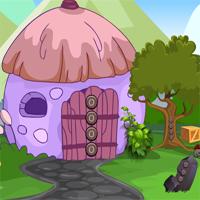 Play Avmgames Rabbit Escape