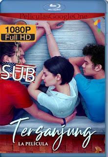 Tersanjung: La Película (Tersanjung: The Movie) (2021) [1080p y 720p BRrip] [Indonesio] [LaPipiotaHD]