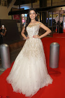 Rukshar Mir designer Anarkali Gown at 64th Jio Filmfare Awards South  2017 ~  Exclusive 084.JPG