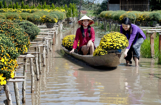 Sa Dec Flower Gardens in Mekong delta, Vietnam 5