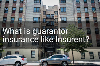 what-is-guarantor-insurance-like-Insurent