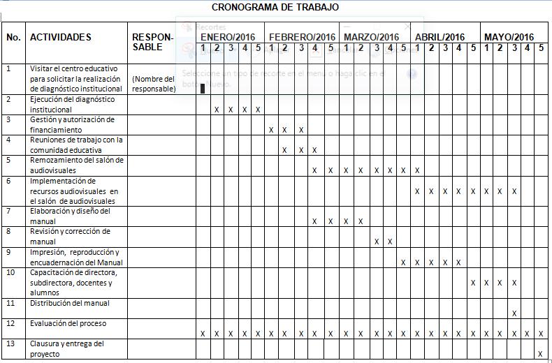 Cronograma de trabajo y control de indicadores verificables ...