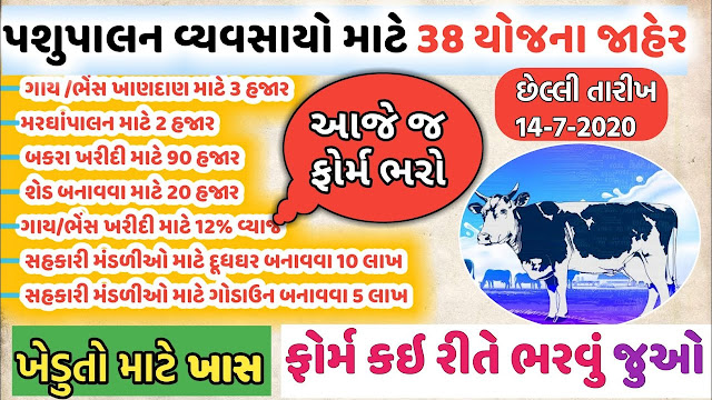 Ikhedut Pasupalan Online Application 2020-21 @i khedut gov guj in