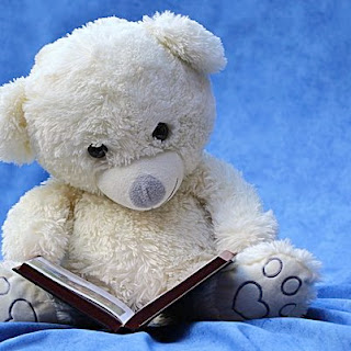 bear reviewing a book