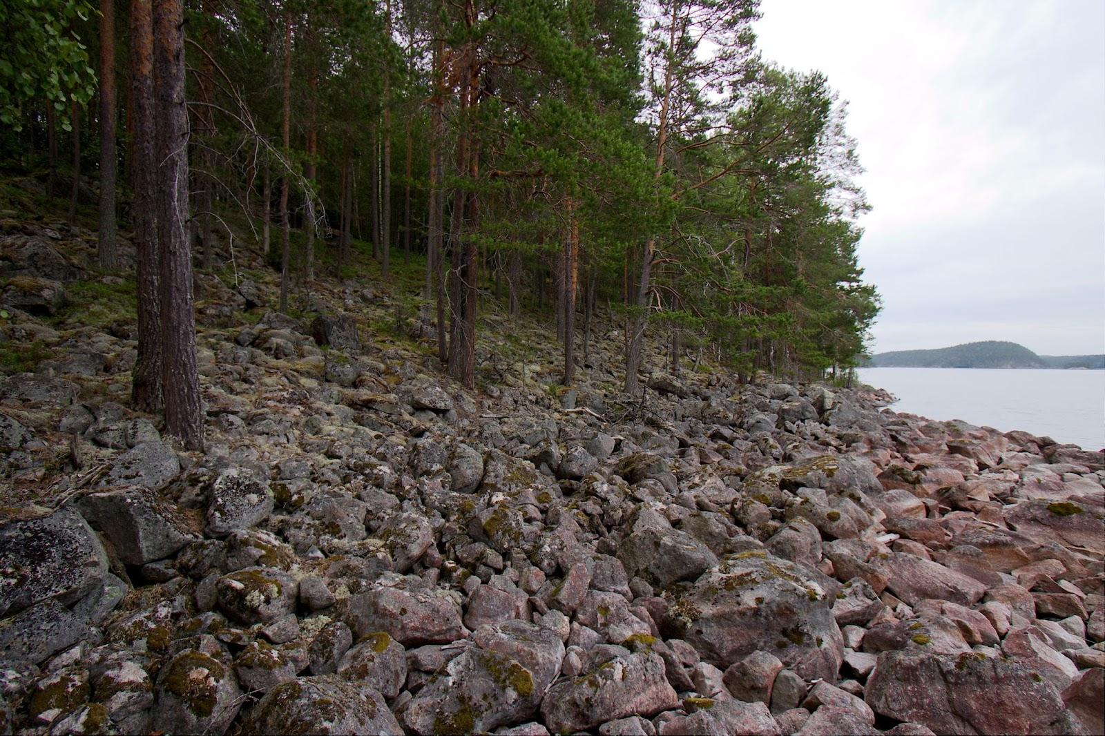 Kivikkoa Laajakaarten leiripaikan välittömässä läheisyydessä