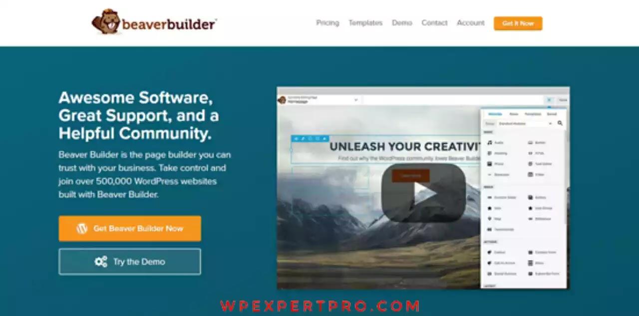 Beaver Themer builder plugin