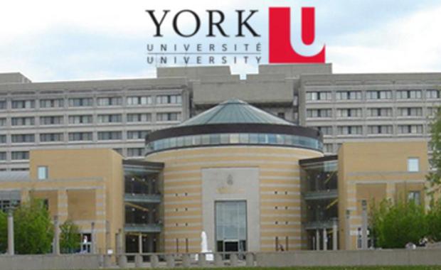لكل العرب منحة مقدمة من جامعة يورك لدراسة البكالوريوس في علم الأحياء في المملكة المتحدة