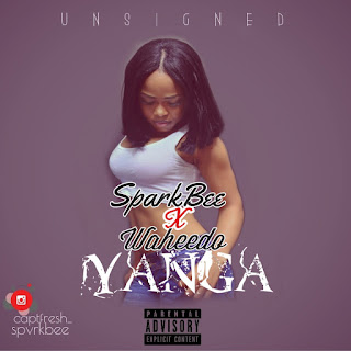MUSIC: SPAVK BEE FT WAHEEDO  - YANGA