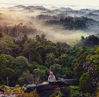 Inspirasi pose menikmati pesona batu dinding Borneo
