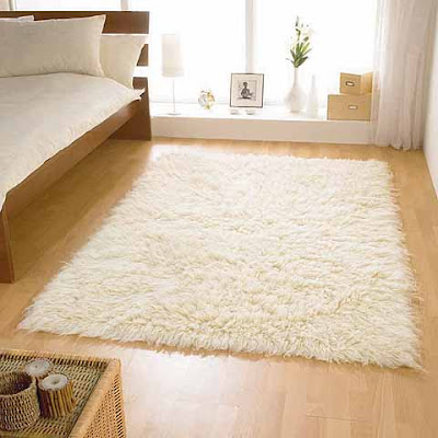 easy-tips-to-keep-rugs-carpets-clean