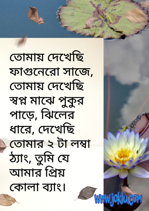 I saw you beside pond funny message in Bengali