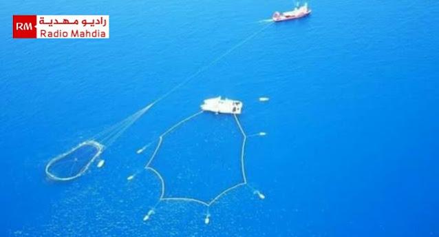 الجمعيات البيئية تطالب بفتح ملف الأقفاص العائمة لتربية الأسماك