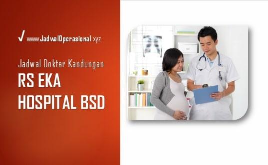 Jadwal Dokter Kandungan RS Eka Hospital BSD