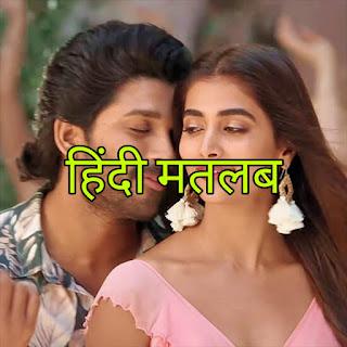 Butta Bomma Lyrics Meaning/Translation in Hindi (हिंदी) – Ala Vaikunthapurramuloo   Allu Arjun