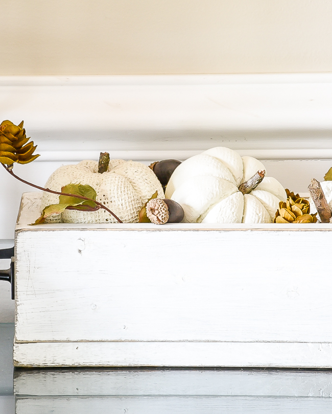 white chalk Painted Dollar Tree pumpkins