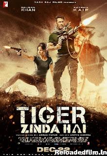 Tiger Zinda Hai (2017) Full Movie Download 480p 720p 1080p