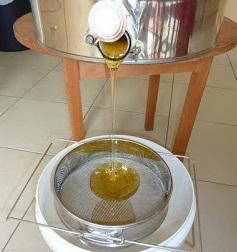 Miel qui coule du maturateur dans un filtre