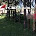 Pese a inconformidad de jóvenes, ayuntamiento de Xaloztoc tala árboles para construir cancha