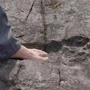 В Китае археологи наткнулись на следы 4-метровых великанов