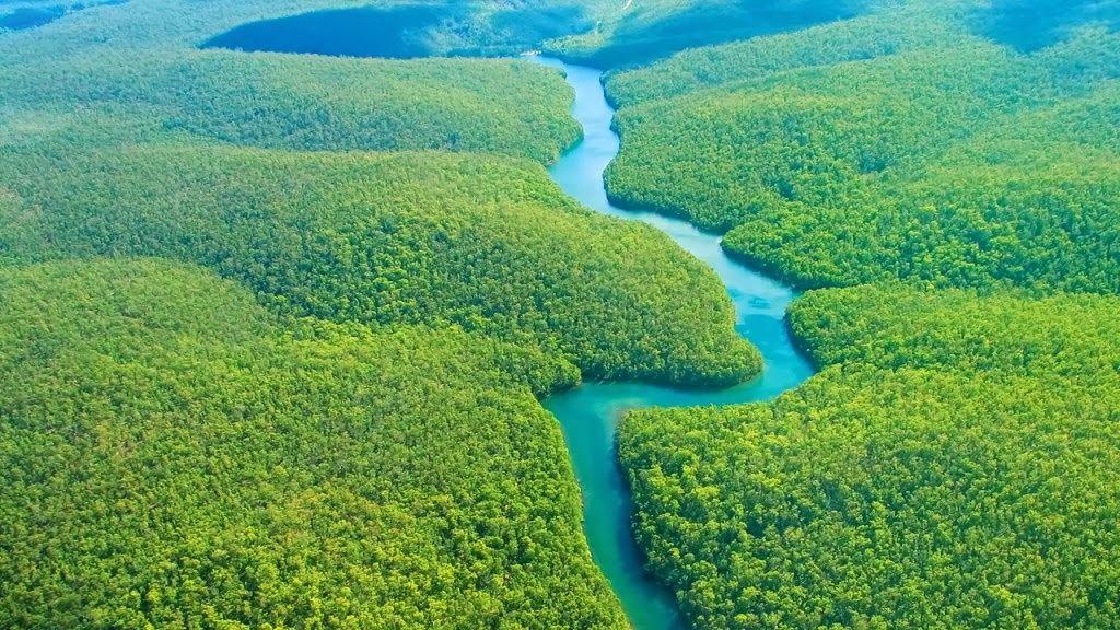 Amazon có diện tích rộng lớn, tương đương Châu Úc