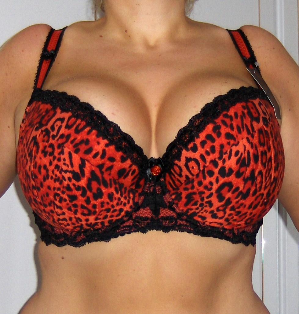 e1e876828 Understanding the different Ewa Michalak bra styles - Curvy Wordy