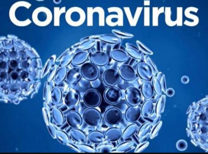 Evde Korona Virüsü için Antibakteriyel Aloe Vera Jel Yapımı
